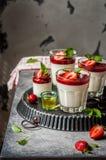 Yogurt Panna Cotta with Strawberries Stock Images