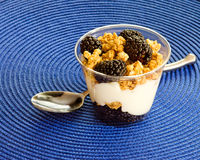 Yogurt parfait with fruit Stock Image
