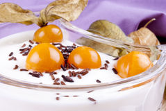 Yogurt with physalis and chocolate sprinkles Royalty Free Stock Image