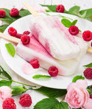 Yogurt popsicles with fresh raspberry on white plate. On wooden background with leaves and pink flowers Royalty Free Stock Photo