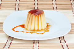 Yogurt-pudding on a plate. Stock Images