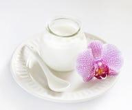 Yogurt puro in un vaso fotografie stock