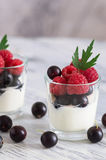 Yogurt with raspberries and currants in a small glass. Yogurt with raspberries and currants in a small glass Stock Photography