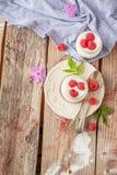 Yogurt with raspberries Royalty Free Stock Photos