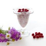 Yogurt with raspberries Royalty Free Stock Photo