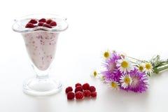 Yogurt with raspberries Stock Photos