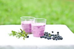 Yogurt shake with blueberry Royalty Free Stock Photo