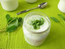 Yogurt smoothie with sorrel Stock Photography
