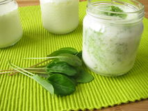 Yogurt smoothie with sorrel Royalty Free Stock Image