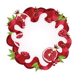 Yogurt splash isolated with pomegranate, vector Stock Photos