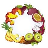 Yogurt splash isolated on tropical fruit, vector Royalty Free Stock Photos