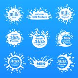 Yogurt splash, milks macula or milky drink blot. Natural yoghurt cream or milk blots silhouette vector cartoon shape set royalty free illustration