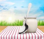 Yogurt. Spoon milk nature white cream glass stock photography
