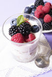 Yogurt with fruits Royalty Free Stock Photos