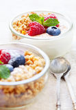 Yogurt verrines Royalty Free Stock Image