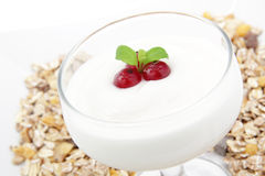 Yogurt on white background Royalty Free Stock Photography