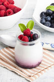Yogurt with white background with berries Stock Images