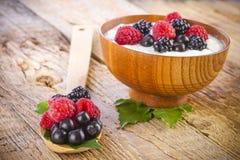 Yogurt with wild berries in wooden bowl Stock Image