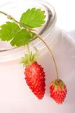 Yogurt and wild strawberries Royalty Free Stock Photos