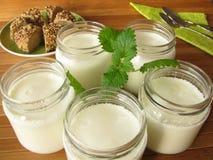 Yogurt from yogurt maker. Natural yogurt from yogurt maker stock image