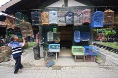 YOGYAKARTA INDONESIEN - JUNI 26, 2014: Den odefinierade mannen säljer fåglar på den Pasar Ngasem marknaden i Yogyakarta, Java, In Arkivfoto