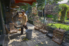 Yogyakarta, Java, Indonesia Fotografia Stock Libera da Diritti