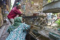 Yogyakarta, Java, Indonesia Immagini Stock Libere da Diritti