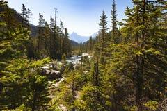 Yoho河视图yoho国家公园不列颠哥伦比亚省,加拿大 免版税库存照片