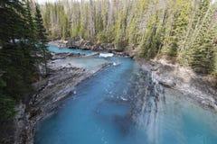 yoho för naturlig park för bro nationell Fotografering för Bildbyråer