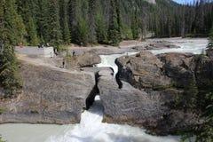 yoho för naturlig park för bro nationell Arkivfoton