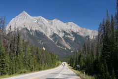 Yoho National Park. Straight scenic road in British Columbia, Canada. Rocky Mountains landscape. Yoho National Park Stock Images