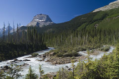 Yoho National Park Stock Image
