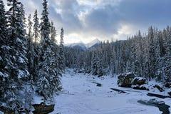 YOHO National Park - paesaggio sotto Montagne Rocciose immagine stock libera da diritti