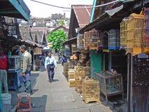 Yojakarta-Vogelmarkt stockbilder
