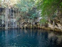 Yokdzonot, Chichen Itza, Mexico, Zuid-Amerika: [Yokdzonot cenote, natuurlijke kuilsinkhole, het zwemmen en het ontspannen toerist stock foto