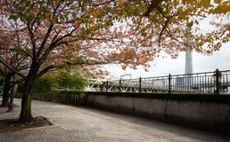 Yokoamicho公园在秋天 免版税库存照片