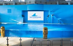 YOKOHAMA,JAPAN MARCH 13,2019 Hakkeijima Sea Paradise Show stadium. Semi outdoor stage with large pool and logo on screen with cartoon statue royalty free stock photo