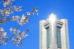 Yokohama landmark tower and cherry blossoms in Kanagawa Stock Photos