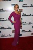 Yolanda H. Foster «les vraies femmes au foyer à la partie de première de la saison trois de Beverly Hills», Roosevelt Hotel, Hol photographie stock libre de droits