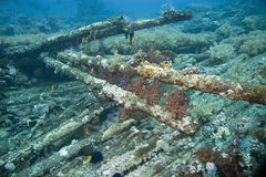 Yolanda wreckage. In the red sea Stock Images