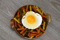 Yolk and albumen. Egg in sea shells in a bowl of pasta on the wooden background Stock Image