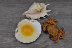 Yolk and albumen. Egg in sea shells on the wooden background. Crab and scallops. Royalty Free Stock Images