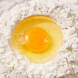 Yolk closeup Royalty Free Stock Photos