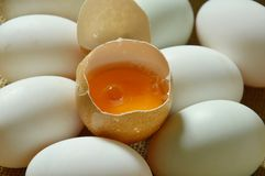 Yolk in crack brown egg on sackcloth. Background Royalty Free Stock Photos