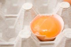 Yolk de ovo imagem de stock
