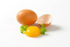 Yolk de ovo cru fotografia de stock