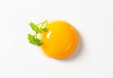 Yolk de ovo cru imagem de stock royalty free