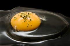Yolk de ovo fresco com salsa. imagens de stock royalty free