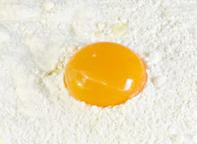 Yolk de ovo na farinha de trigo imagens de stock royalty free