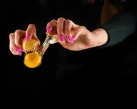 Yolk dropping from cracked raw egg divided by woman hands. Stock Photography